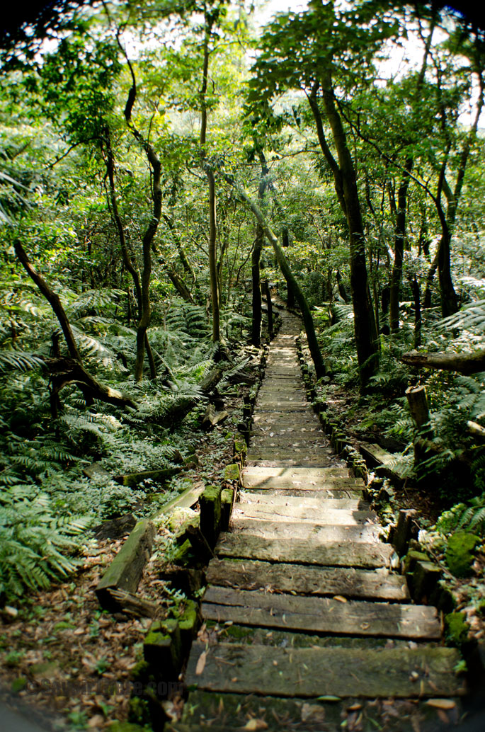 Taipei Hiking Trails