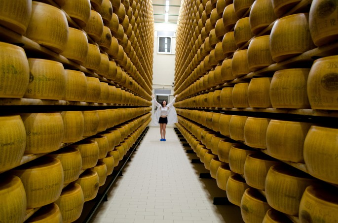 Parmesan Cheese Factory