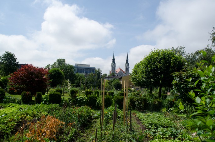 One of Ljubljana's many downtown veggie gardens