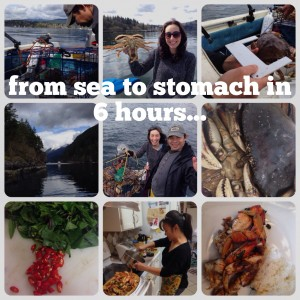 Sea to stomach