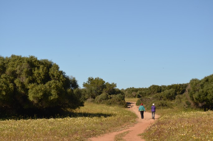Things to do in Menorca: Walking