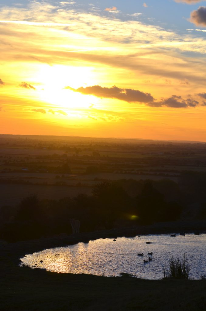 sunset at Port Lympne