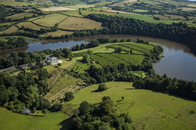 Weekend in Devon: Sharpham Wine and Cheese