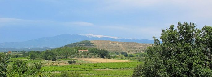 bicycle holiday to Provence