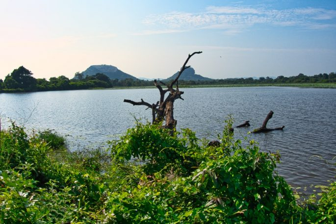 Sigiriya Lake view