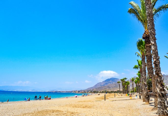 Mazarron beach with palm trees